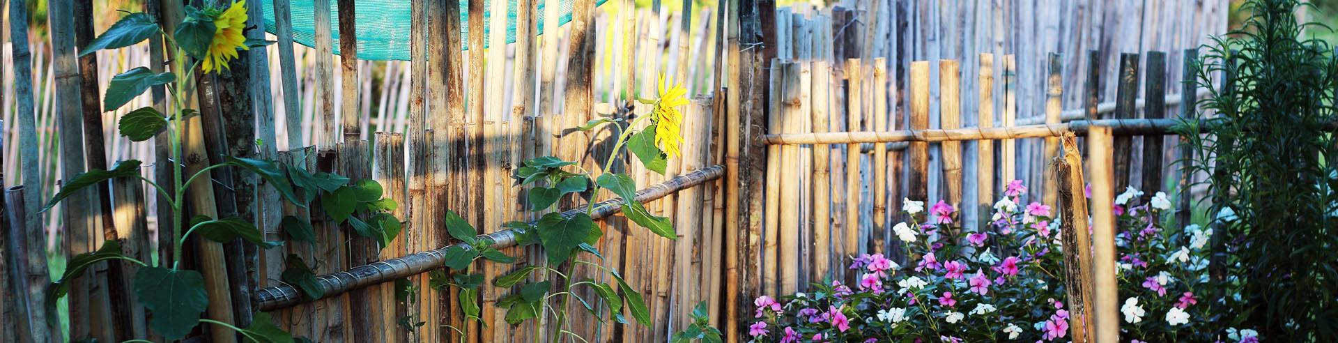 Paraguay Garten Zaun