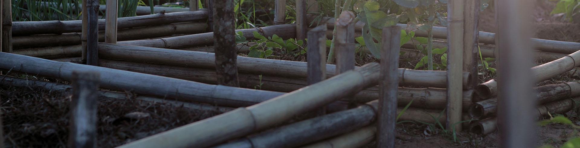 Paraguay Garten